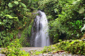 La Cascade de Didier en Martinique